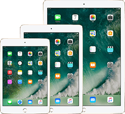 Apple iPad mini、iPad pro