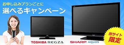 液晶テレビキャンペーン